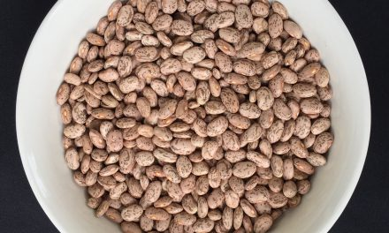 Recipe: Dried Beans