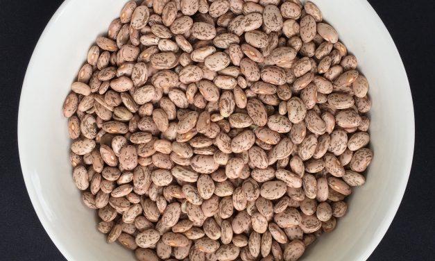 Recipe: Dried Beans